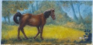horsesmallskylight