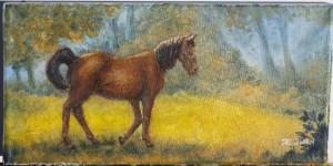 horsesmallsunlight