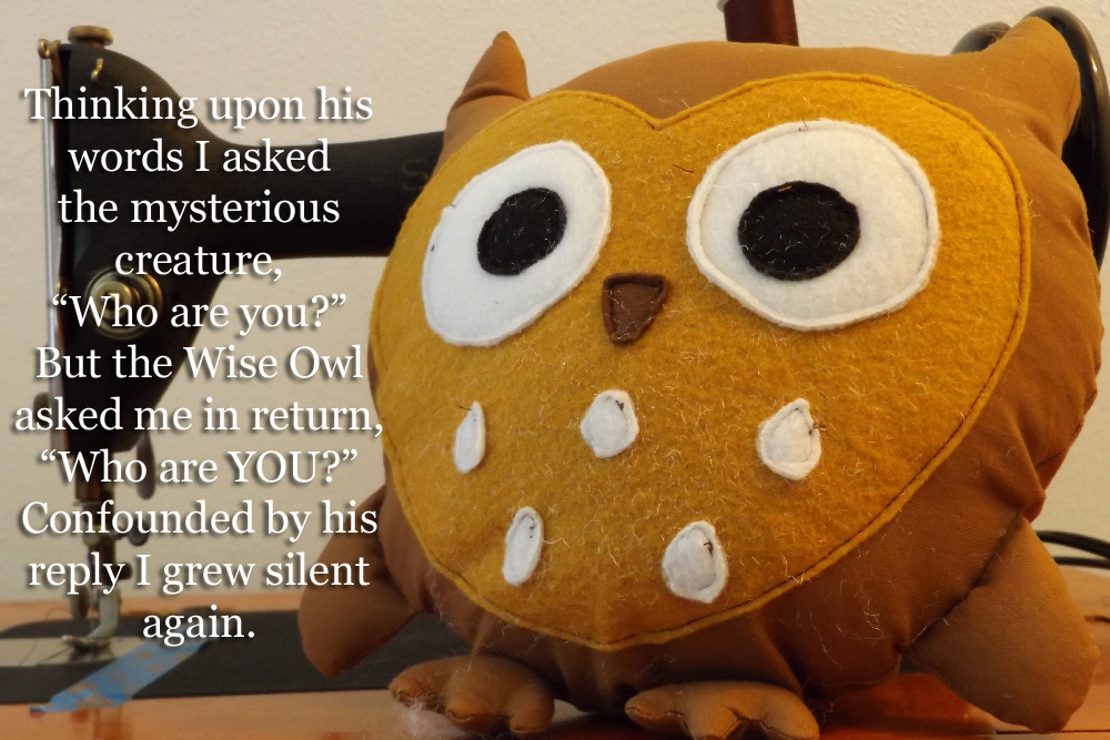 "Thinking upon his words I asked the mysterious creature, ""Who are you?"" But the Wise Owl asked me in return, ""Who are YOU?"" Confounded by his reply I grew silent again."